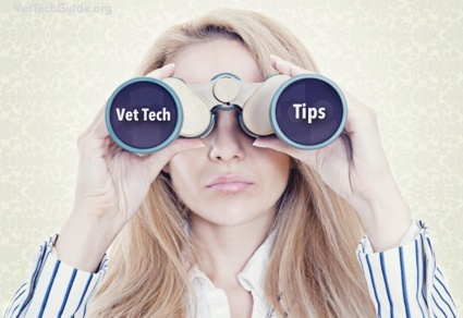 vet tech tips