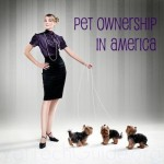 Pet Ownership in America and Employment Opportunities for Vet Techs