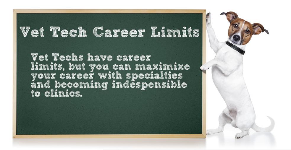 vet-tech-career-2.jpg